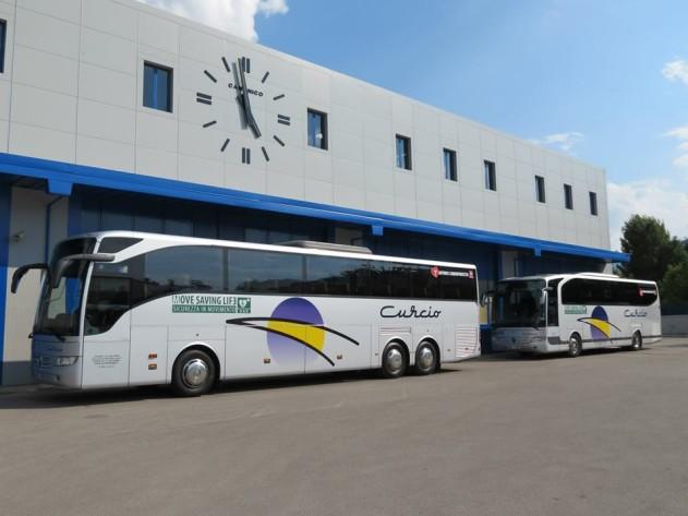 bus Curcio 2