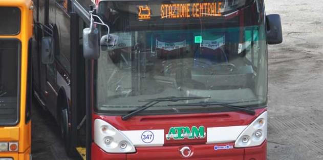 bus reggio calabria